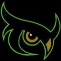 Dark Owls de Saint Arnould Football Américain