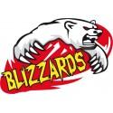 Blizzards de Freyming Merlebach Football Américain