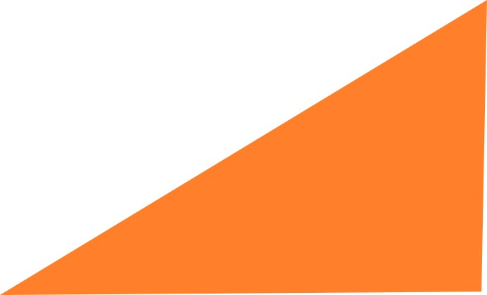 white-neon orange