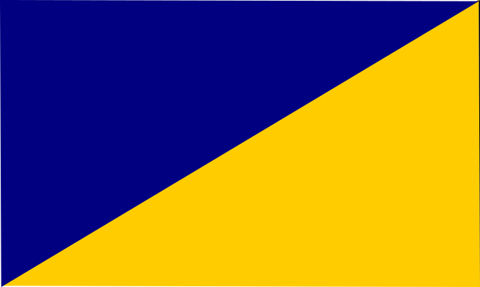 navy - yellow